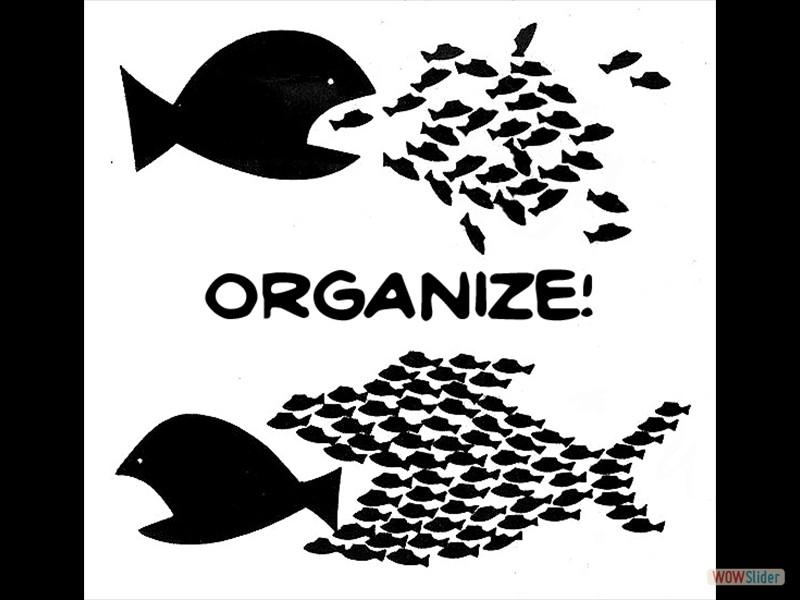 0 - OrganizeGDU-Kopie - Kopie