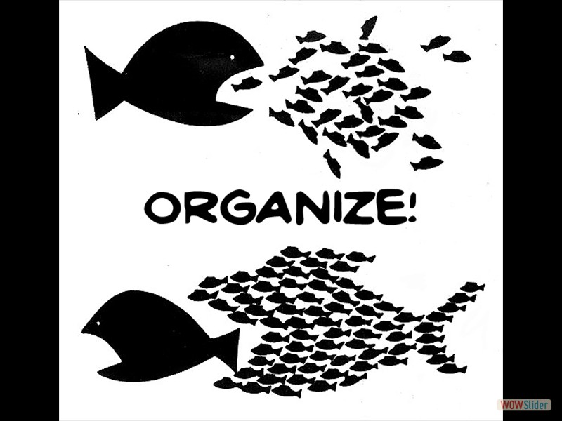 10 - OrganizeGDU-Kopie - Kopie