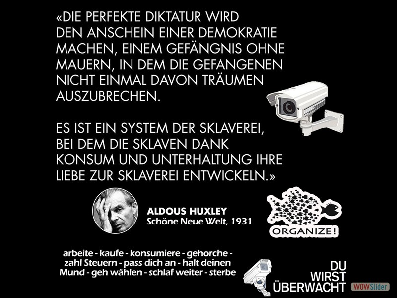 11.1 - Aldous-Huxley-Die-perfekte-Diktatur-3-organize