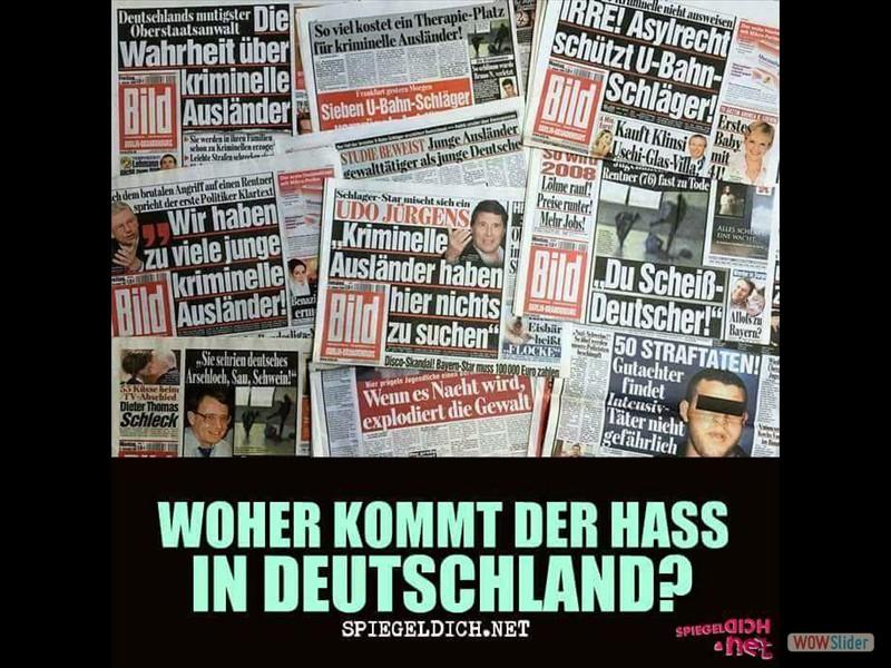 31 - Woher kommt der hass in Deutschland - Medien, BILD